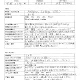 中村さとみ様-01